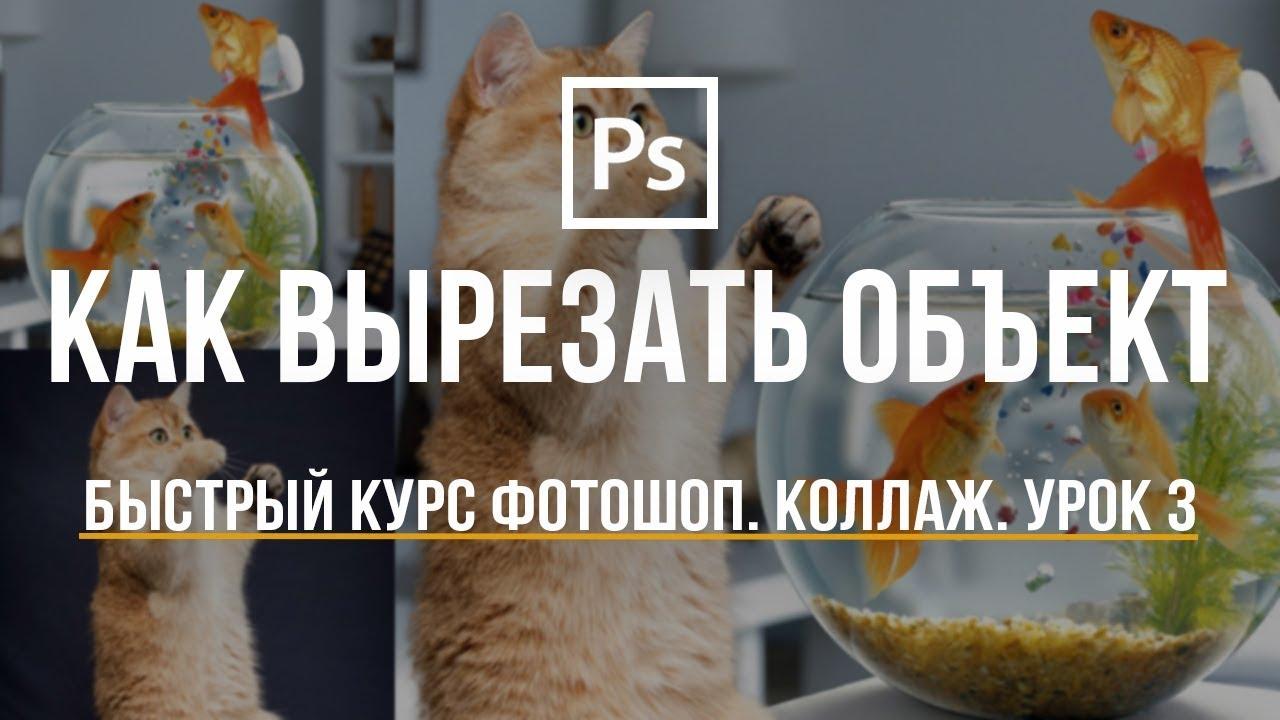Уроки Фотошоп. Как вырезать объект и вставить на другой фон. #3
