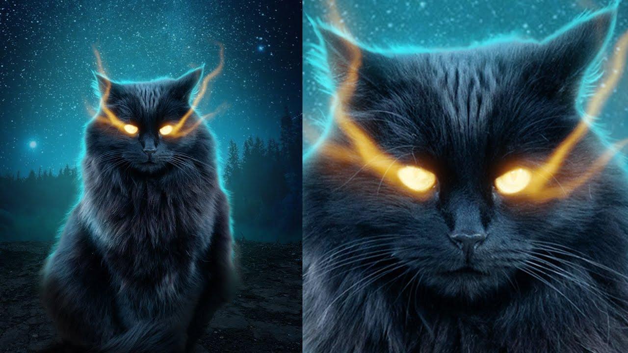 Мистический кот в Фотошоп. Создаем магический свет из глаз
